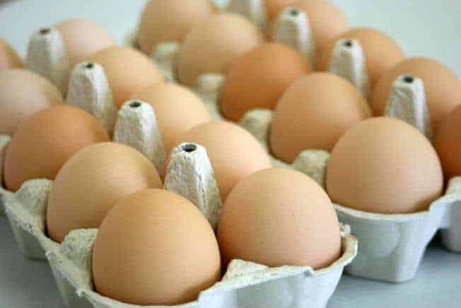 مشروع تجارة بيض الدجاج وأرباح ممتازة