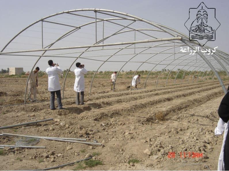 بناء الصوب الزراعية
