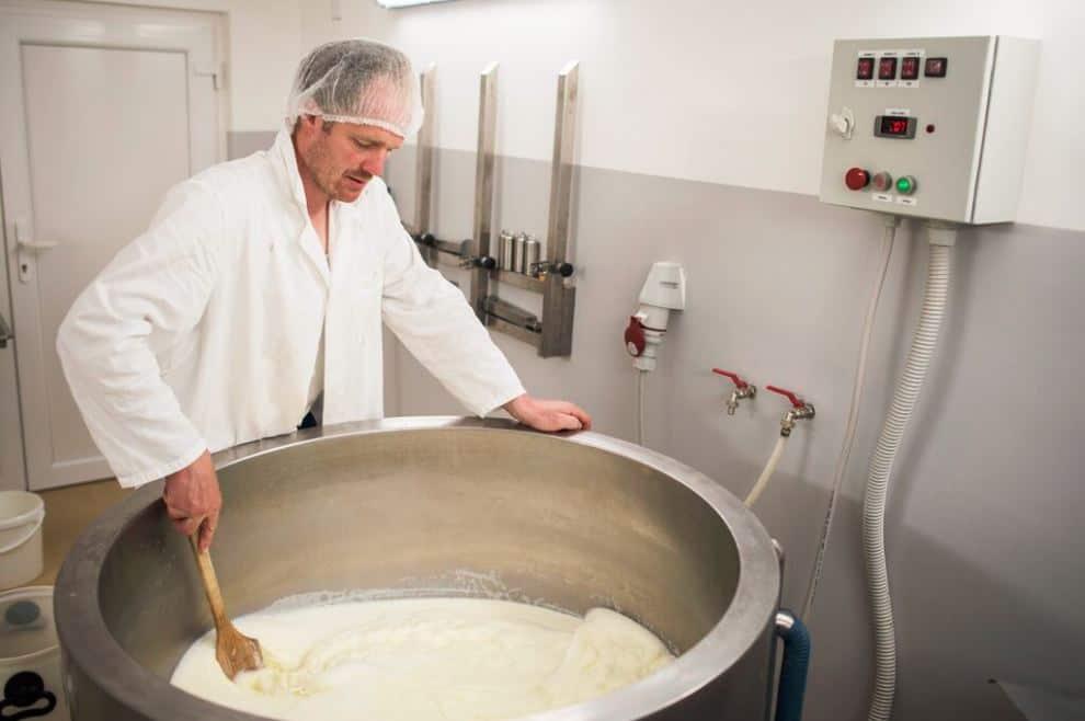 مشروع-انتاج-الجبن-الابيض
