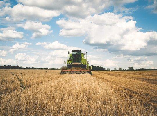الاستثمار الزراعي
