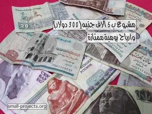 مشروع ب 5 الاف جنيه